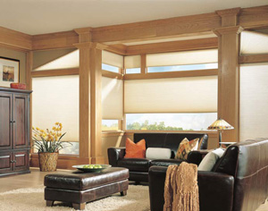 Blinds By Design In Home, In Office Personal Color Consultation ...